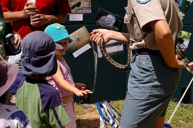 Hadí fobie versus děti a dospělí