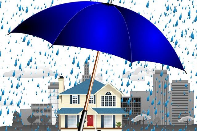 ochrana domova